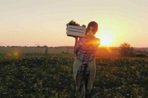 farm roles hero