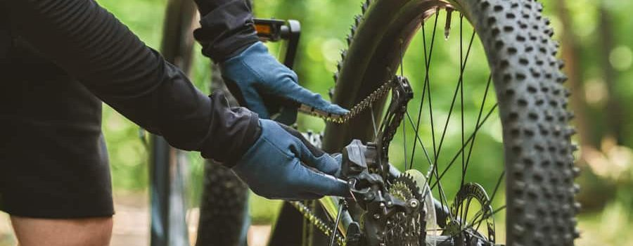 bicycle insurance quotes